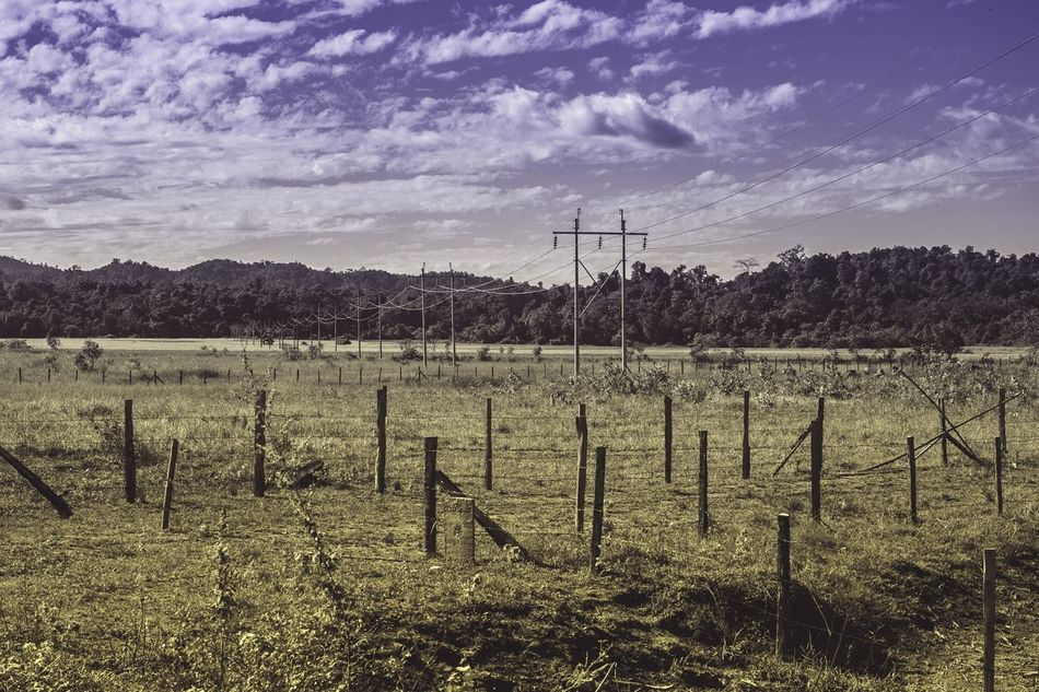 Sky Field No People Beauty In Nature Landscape Rural Scene Nature Farm Travel Photography Electricity Tower Outdoors EOSM2 Traveling Beauty In Nature Canon Eos M2 Kachinstate Myanmar