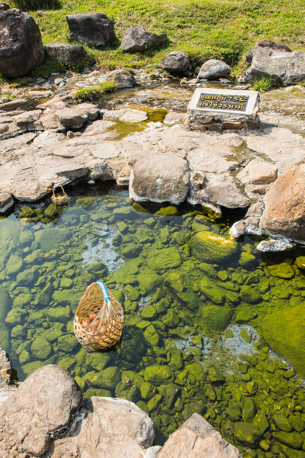 Boil egg in hot springs Basket Beauty In Nature Day Egg Floating On Water Food Green Ground Group Of Objects Healthy Eating Healthy Food High Angle View Hot Spring Natural Nature No People Object Onsen Onsen Egg Outdoors Sunlight Transparent Travel Water