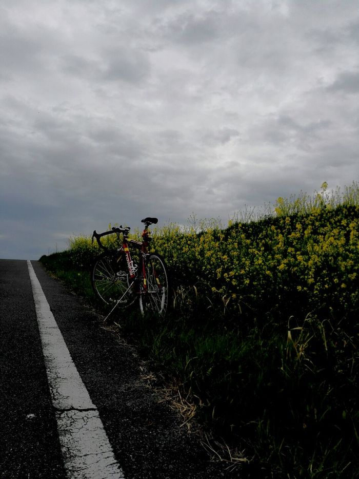 Cycling Cycling Around Cyclingphoto Roadbike Springcycling Perspective Clouds And Sky Clouds Cloudy Day Spring Flowers Spring Cyclinglife Cyclingphotos Cycling Shot