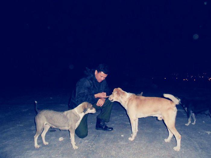 Perrona qstuvo la Noche acompañado del Rambo y sus 3 Bitches Veracruz Perros Del Mal