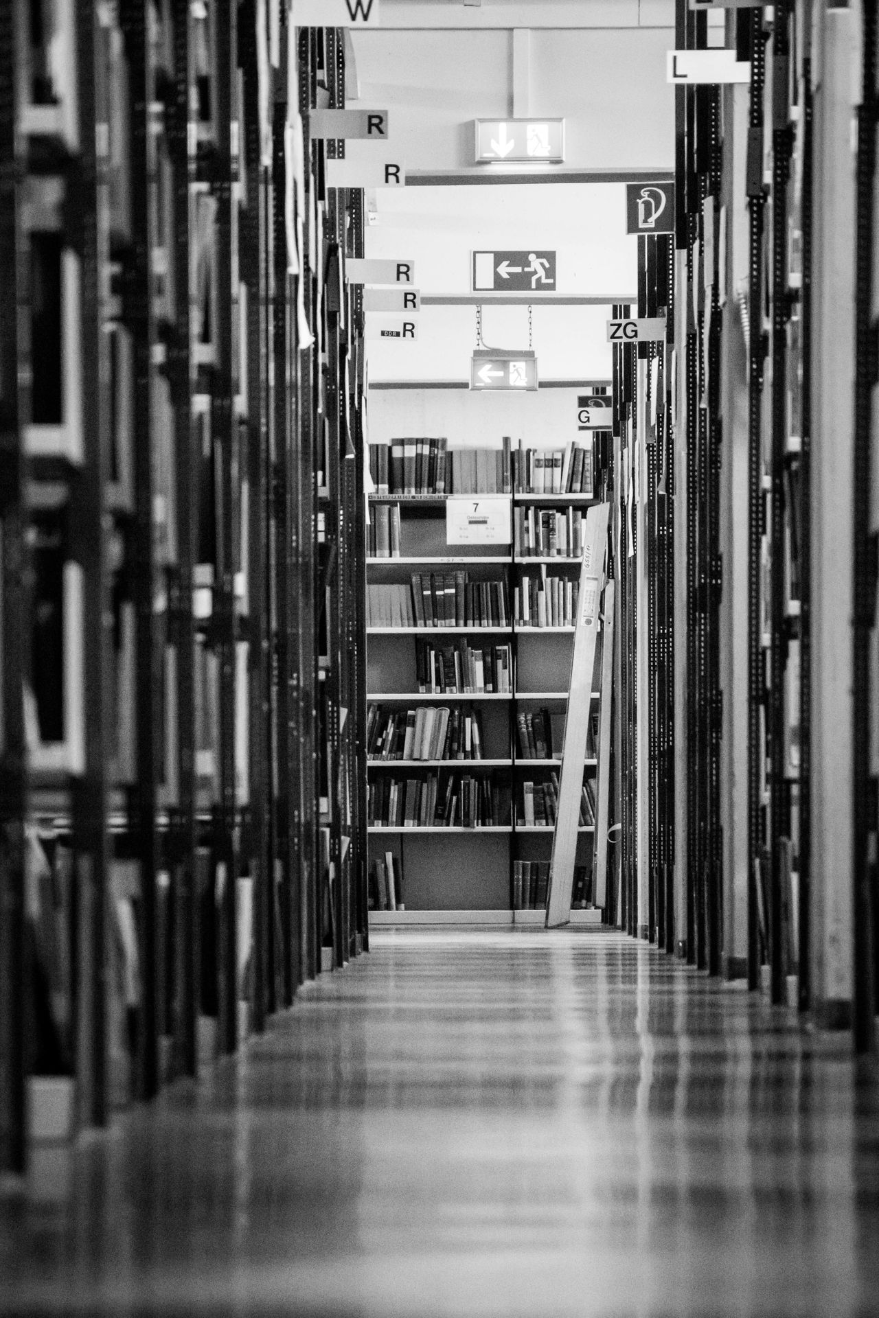 Gray day between books In A Row Indoors  No People Book Shelves Bookshelves Bookstore Library Bookshelf Education Shelf University Research Book Architecture Archives Study Learn Studieren Student Studying Freie Universität Berlin Open Stack