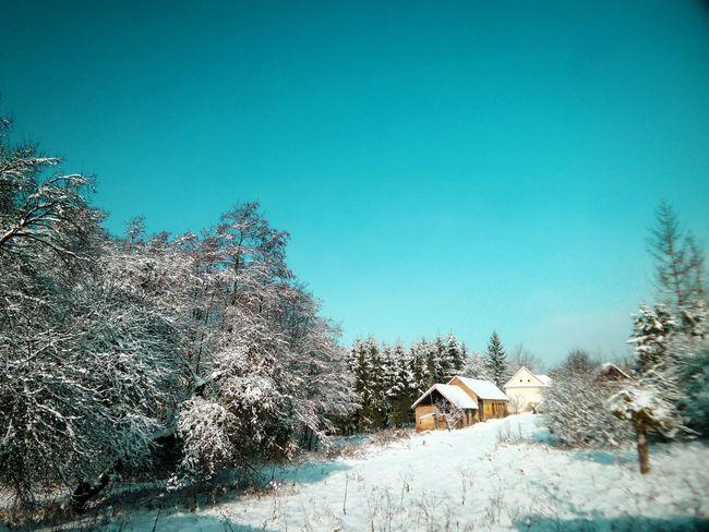 It's Cold Outside Winter Wintertime Winterwonderland Cold Winter ❄⛄ Winter Landscape Hungary Hungarian Magyar Magyarország Nagykanizsa Hideg Frozen Frost Frosted Trees Freezy Morning Cold Days Landscape