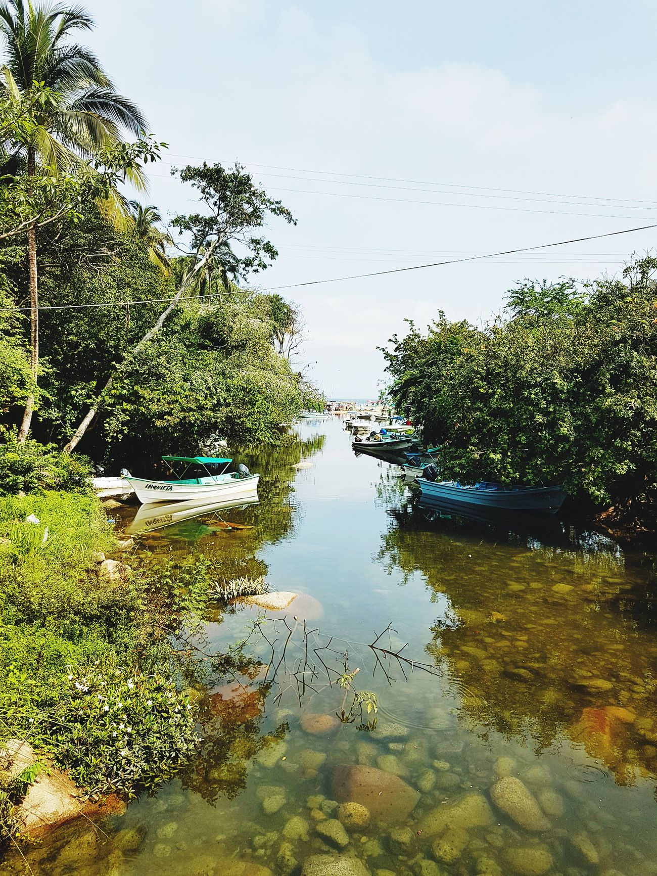 River Reflection Water Lake No People Outdoors Tree Tranquility Day Nature Sky Beauty In Nature Boats Boats⛵️ Boats And Water Green Vallarta,Mexico Freshness Tree Scenics Sun Mexican Flowers Rocks Rocks And Water