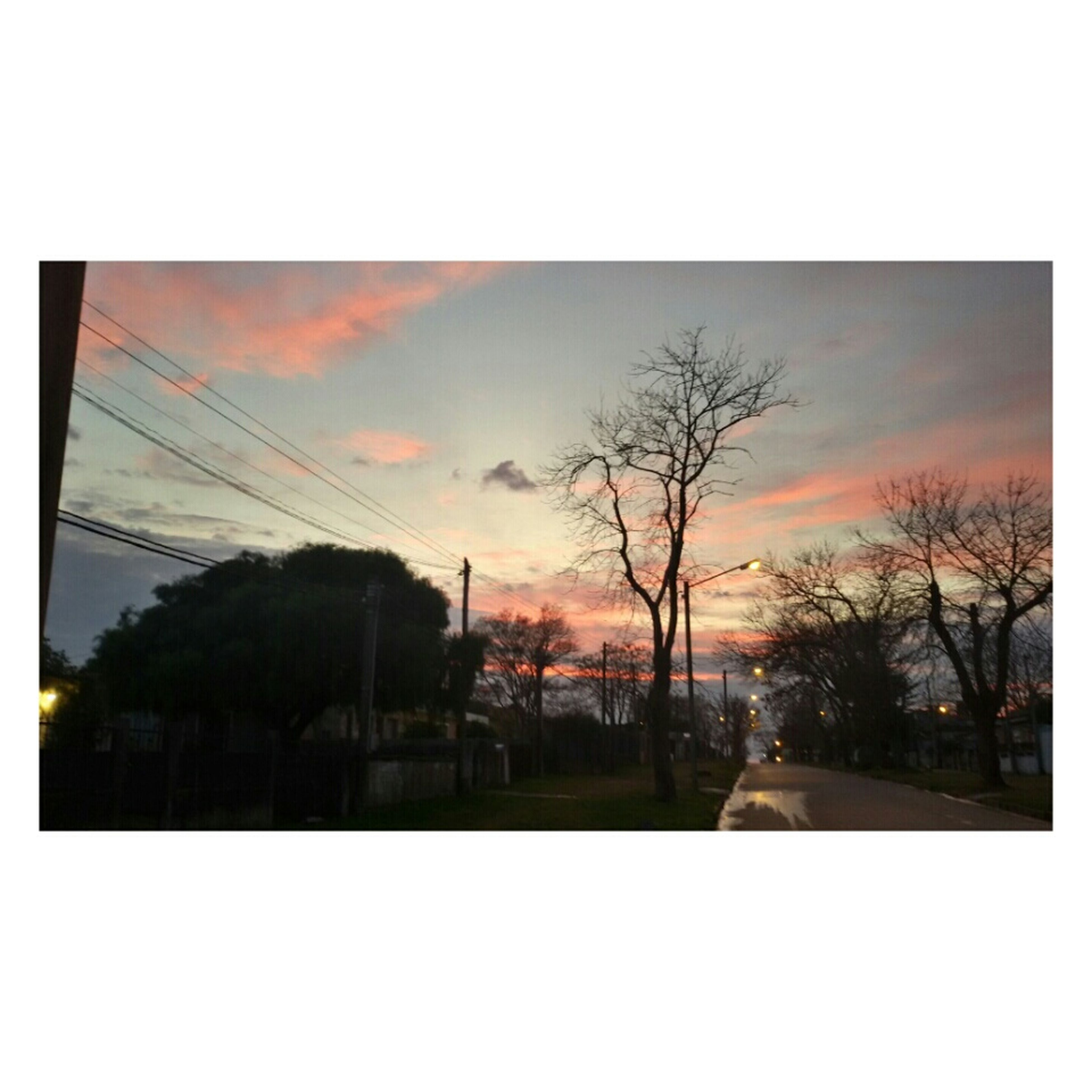 transfer print, tree, auto post production filter, sky, sunset, silhouette, bare tree, cloud - sky, scenics, nature, tranquility, beauty in nature, building exterior, tranquil scene, dusk, built structure, power line, house, architecture, cloud