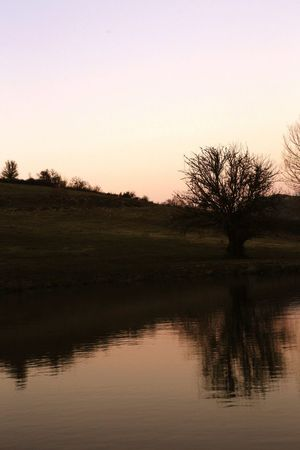 Beauty In Nature Sunset Water Nature Tree Sky Reflection Landscape Silhouette Outdoors No People Day Cloud - Sky Nature Scenics Dramatic Sky Human Face Contemplation Beauty In Nature Mountain Lifestyles Beauty Flower Lake Red