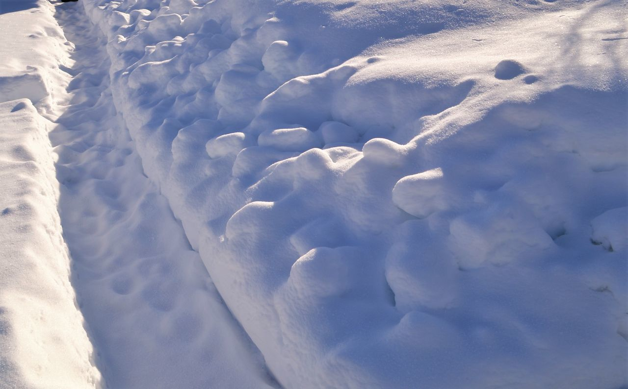 Winter Snow ❄ Snow White Frozen Frozen Nature Trondheim Lian