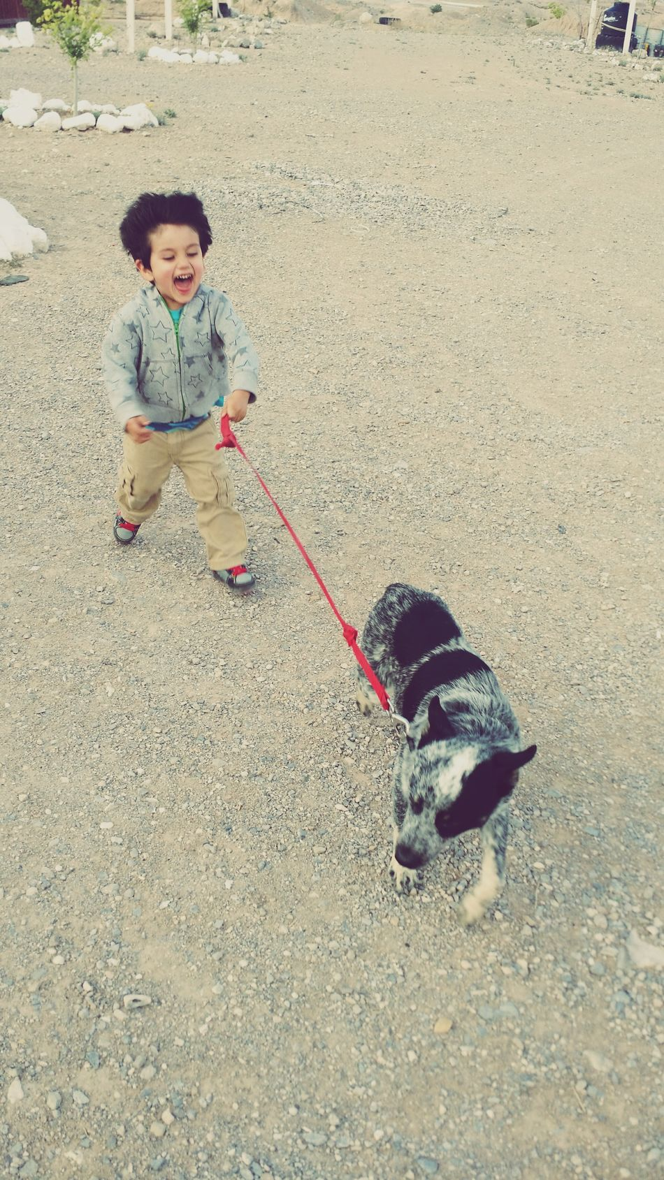 Un Toque De Infancia Enjoying Life My Loyal Companion <3 Myfavoriteplace