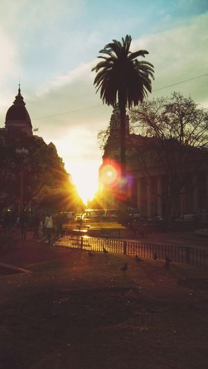 Evening Cityscapes Argentina Open Edit Treavelling Walking Around The Street Photographer - 2015 EyeEm Awards