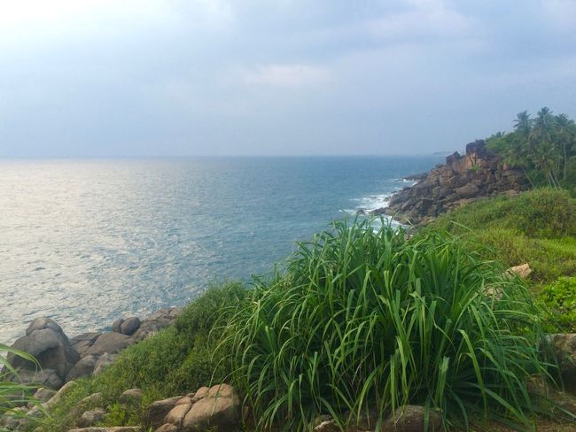 Beauty In Nature Blue Calm Coastline Grass Green Color Horizon Over Water Idyllic Nature No People Non-urban Scene Ocean Outdoors Plant Remote Scenics Sea Seascape Sri Lanka SriLanka Tranquil Scene Tranquility Unawatuna