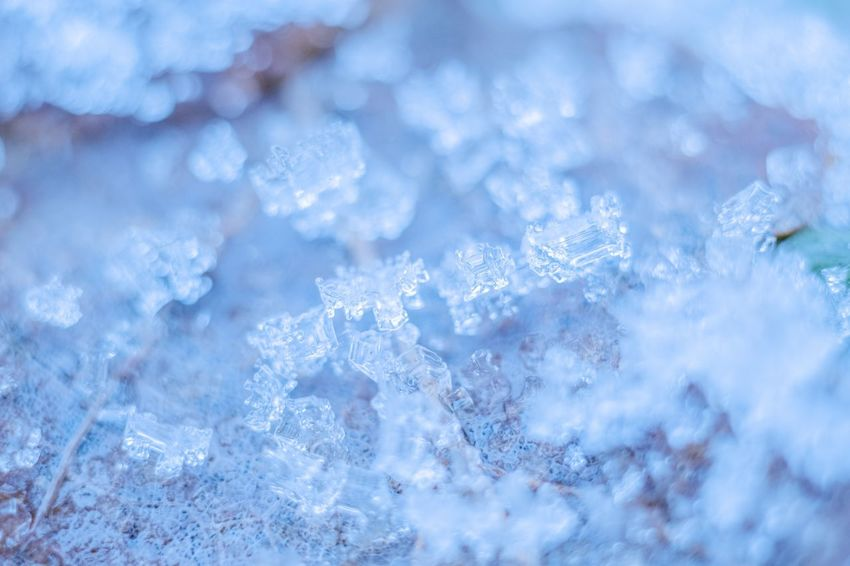 Cold Temperature Winter Ice Frozen Snow Ice Crystal Nature Close-up Weather White Color Crystal Snowflake Frost Backgrounds Water Beauty In Nature No People Outdoors Day Wintertime Zeiss60mm Tenebrio.photos Fuji-xe2s EyeEm Nature Lover Showcase: January