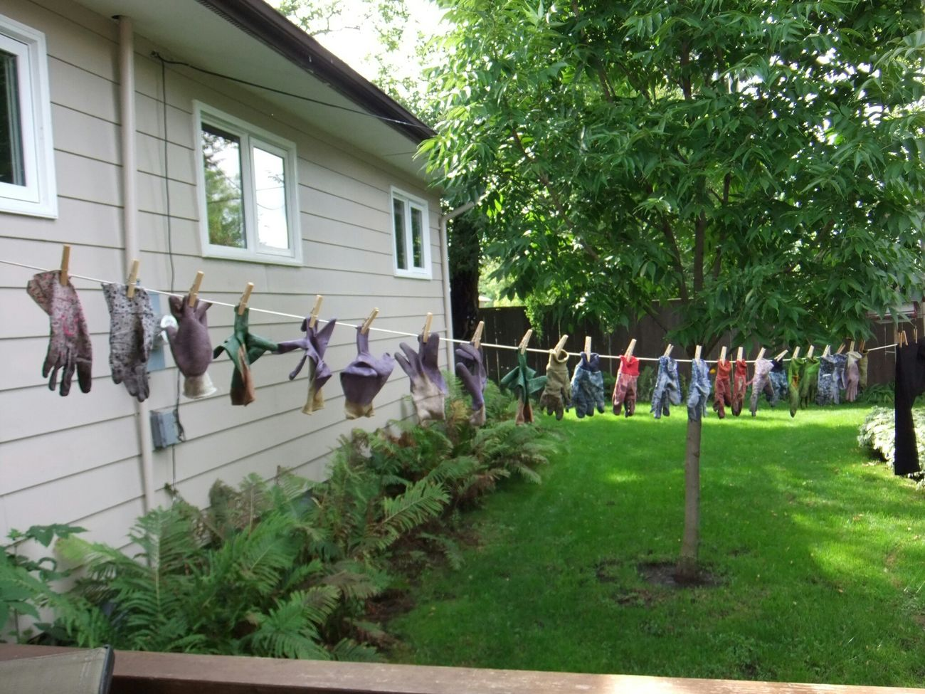 Gloves and all the freshly washed gloves are in the potting shed. Fall Of 2014 Simple Photography Clothesline Waiting For Summer 2015 Colours Home Gardening