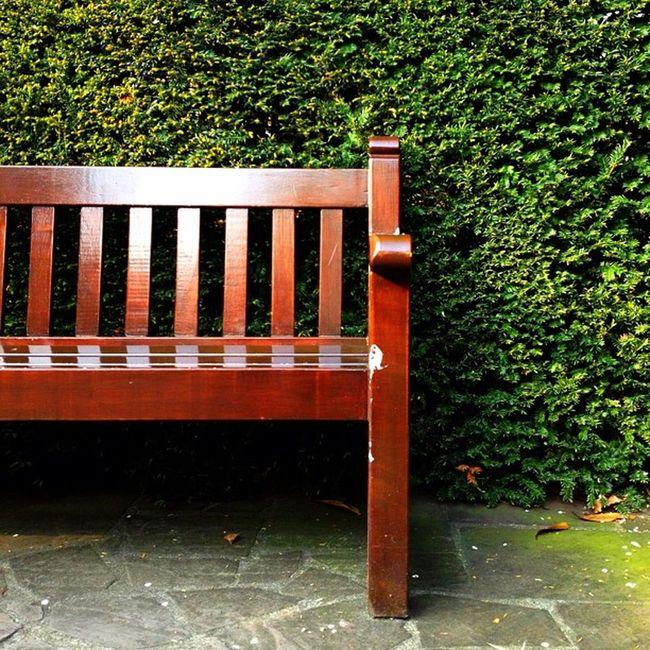 Bench #park #jj #dutch #jj_forum #ubiquography #holland #keukenhof Holland Park Dutch Jj  Keukenhof Jj_forum Ubiquography