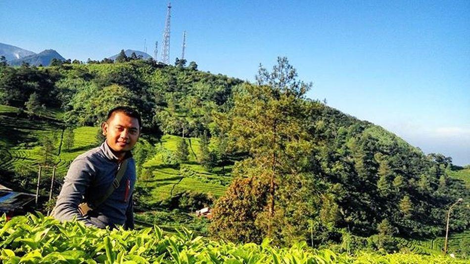 Iloveindonesia Visitindonesia Kebunteh Pucak Bogor