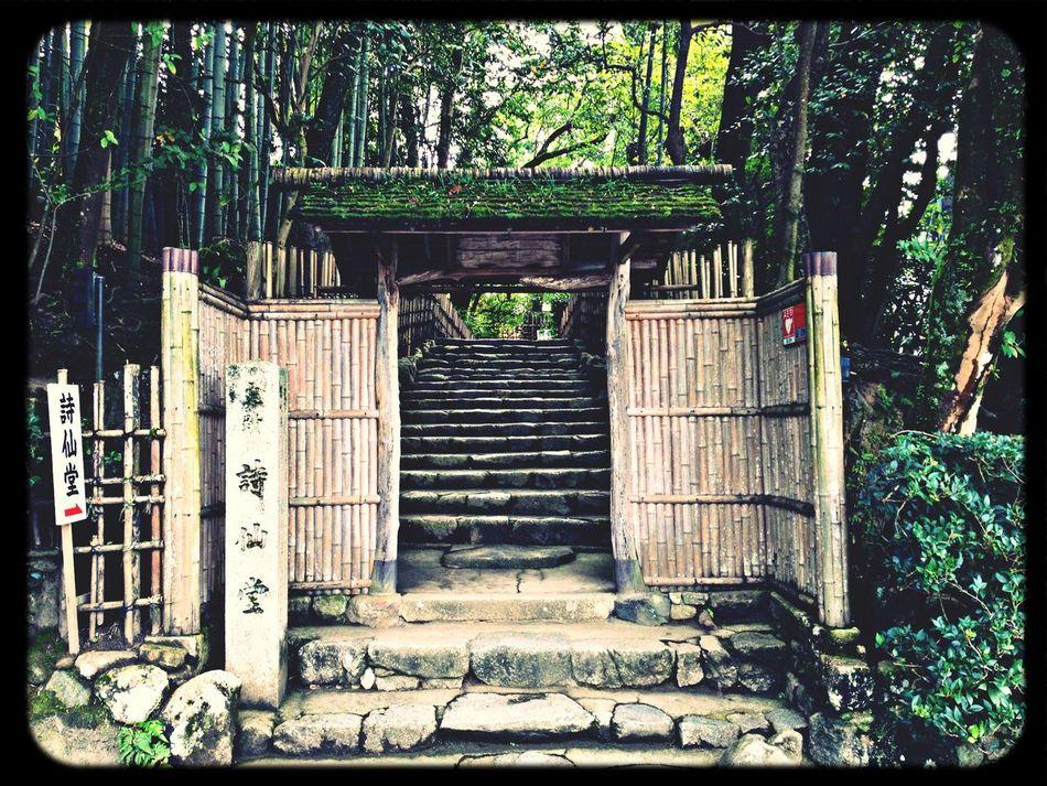 Entrance Steps Green Temple