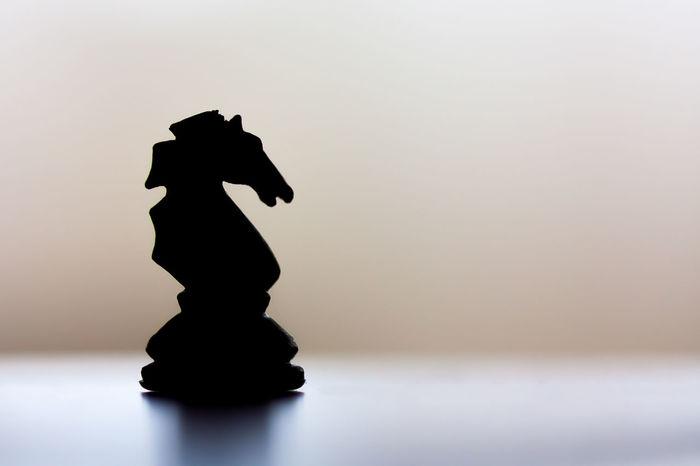 Chess Chess Piece Close-up Knight - Chess Piece Silhouette Silhouette_collection Silhouettes Silhoutte Photography