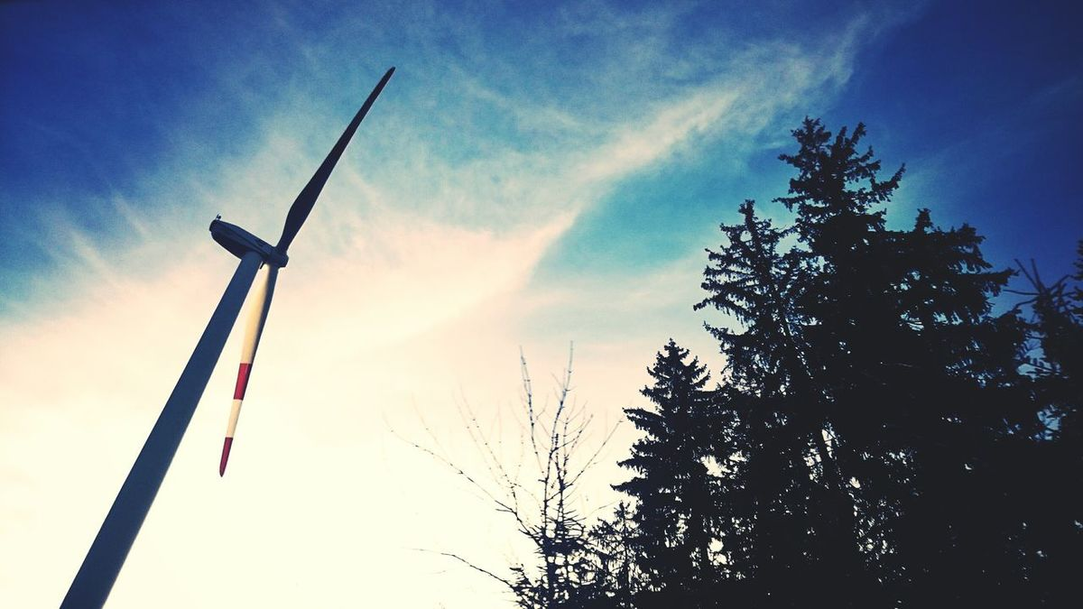 Wind Energy Alternative Energy Sky And Trees Trees Sky_collection