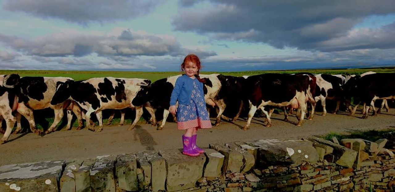 One Person Agriculture Only Women Farmer Cloud - Sky Cow Livestock Outdoors Real People Children Only Red Beauty In Nature Ireland_gram Colour Of Life Uniqueness EyeEm Best Shots Ireland Postcard From Ireland Low Angle View Day Eyem Best Shots EyeEm Nature Lover Red Hair Baby Childhood Investing In Quality Of Life