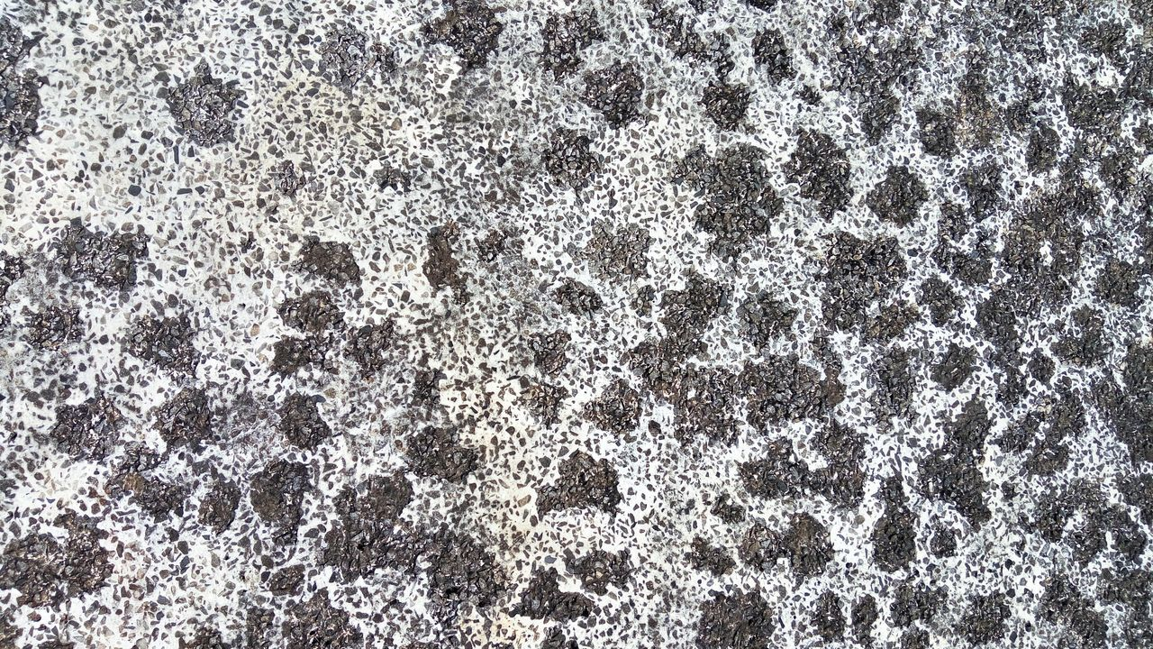 Background Cement Cement, Concrete, Gray, Stone, Hard, Construction, Urban, Paving, Ceramic Detail Floor Hard Heavy Layer Material Pattern, Texture, Shape And Form Porcelain  Porcelain, Mosaic, Pieces, Broken, Design, Art, Decoration, Style, Vintage, Traditional, Creativity, Ceramic, Cracked, Rafael Vilalta Rafaelvilalta Shape Solid Stone Stone, Stones, Outdoor, Natural, Design, Rock, Material, Shape, Color, Detail, Park, Decoration, Ground, Home Stones Texture, Pattern, Material, Textured, Surface, Detail, Background, Wall, Solid, Material, Layer, Shape, Sheet, Decorative, Floor, Cover, Board Textures Textures And Surfaces Vilaltawolf Wall