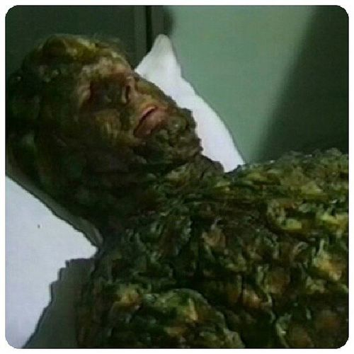 Oh, oh, oh ! Géant vert !!! Krynoid TheSeedsOfDoom DoctorWhoClassic
