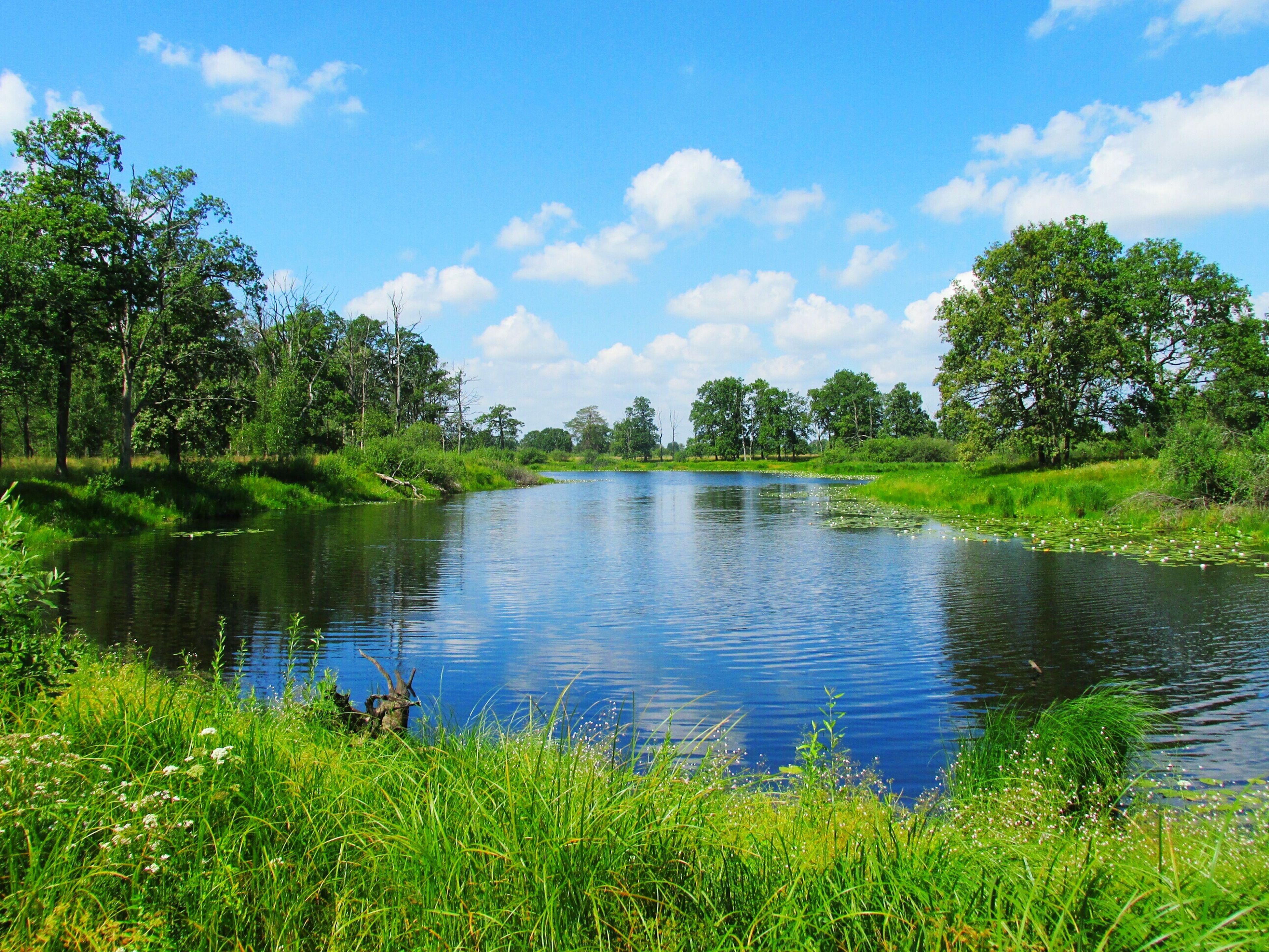 Беларусь синеокая.. Belarus Blue-eyed Nature Lake