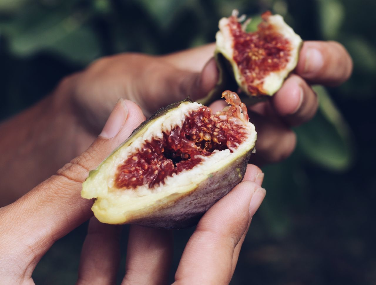 Cropped Hands Holding Figs