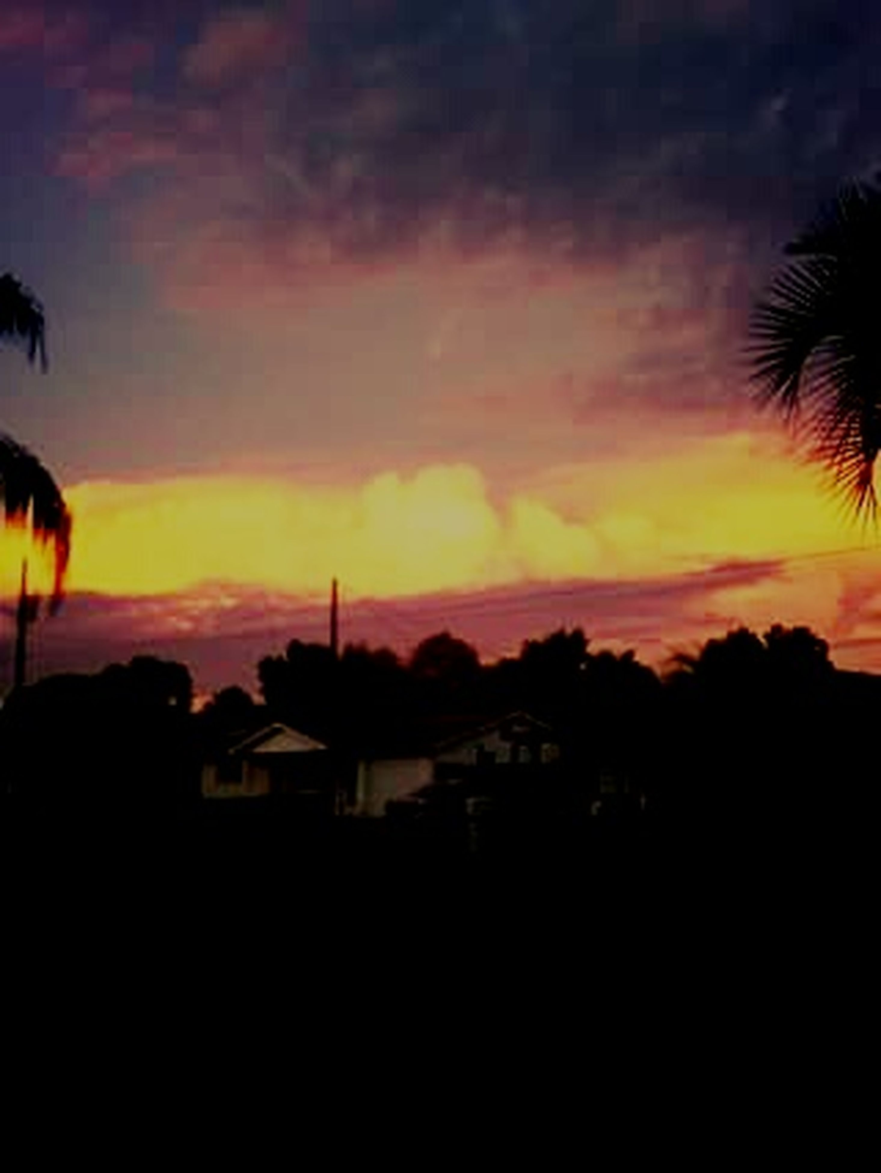 sunset, silhouette, sky, orange color, scenics, beauty in nature, tranquil scene, tree, tranquility, cloud - sky, dark, dramatic sky, nature, landscape, idyllic, dusk, palm tree, moody sky, cloud, outline
