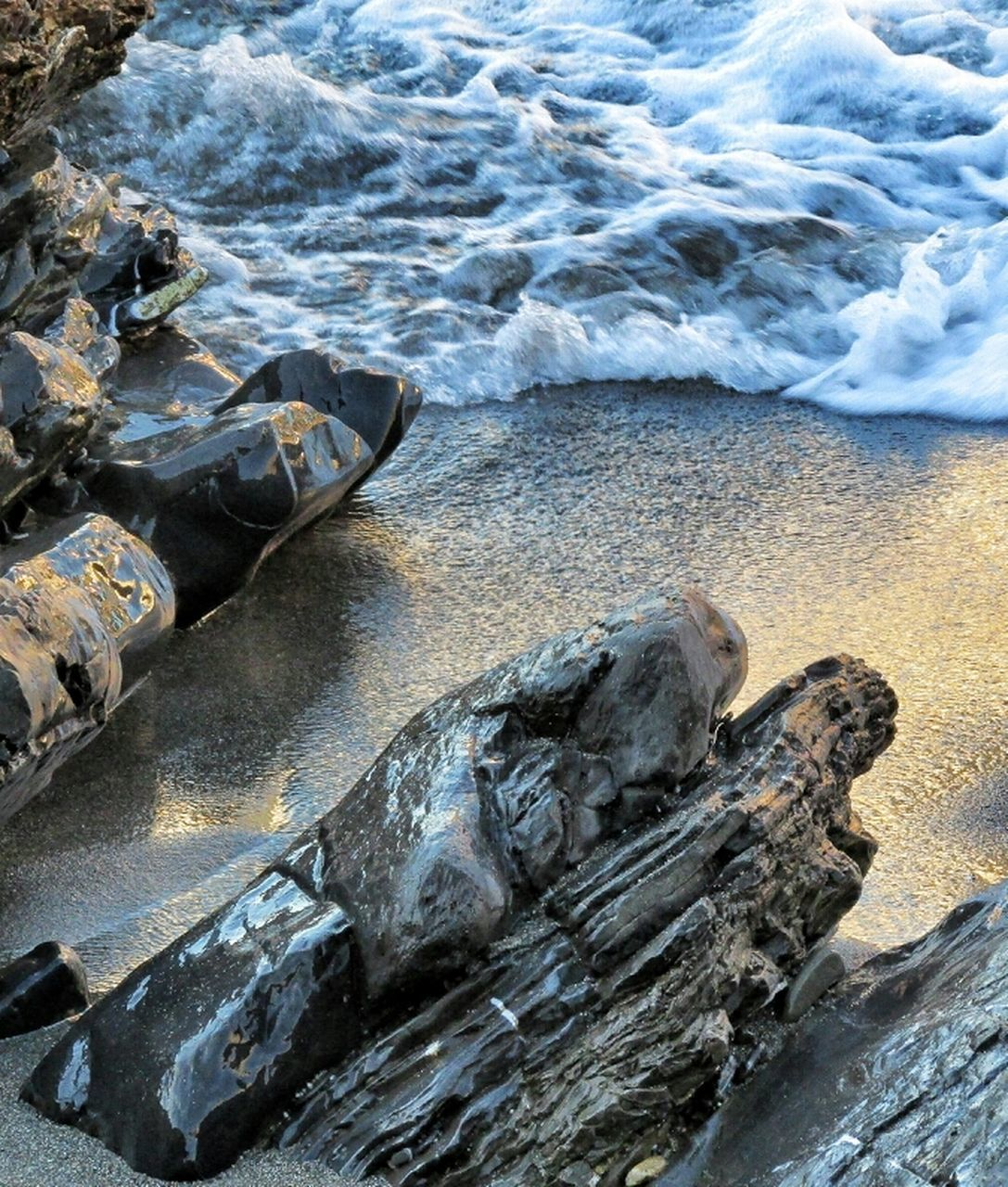 water, sand, beach, rock, wet, rippled, stone, sea, swimming, sea life, rock - object, nature, fish, wildlife, natural pattern, rough, physical geography, geology, power in nature, vacation