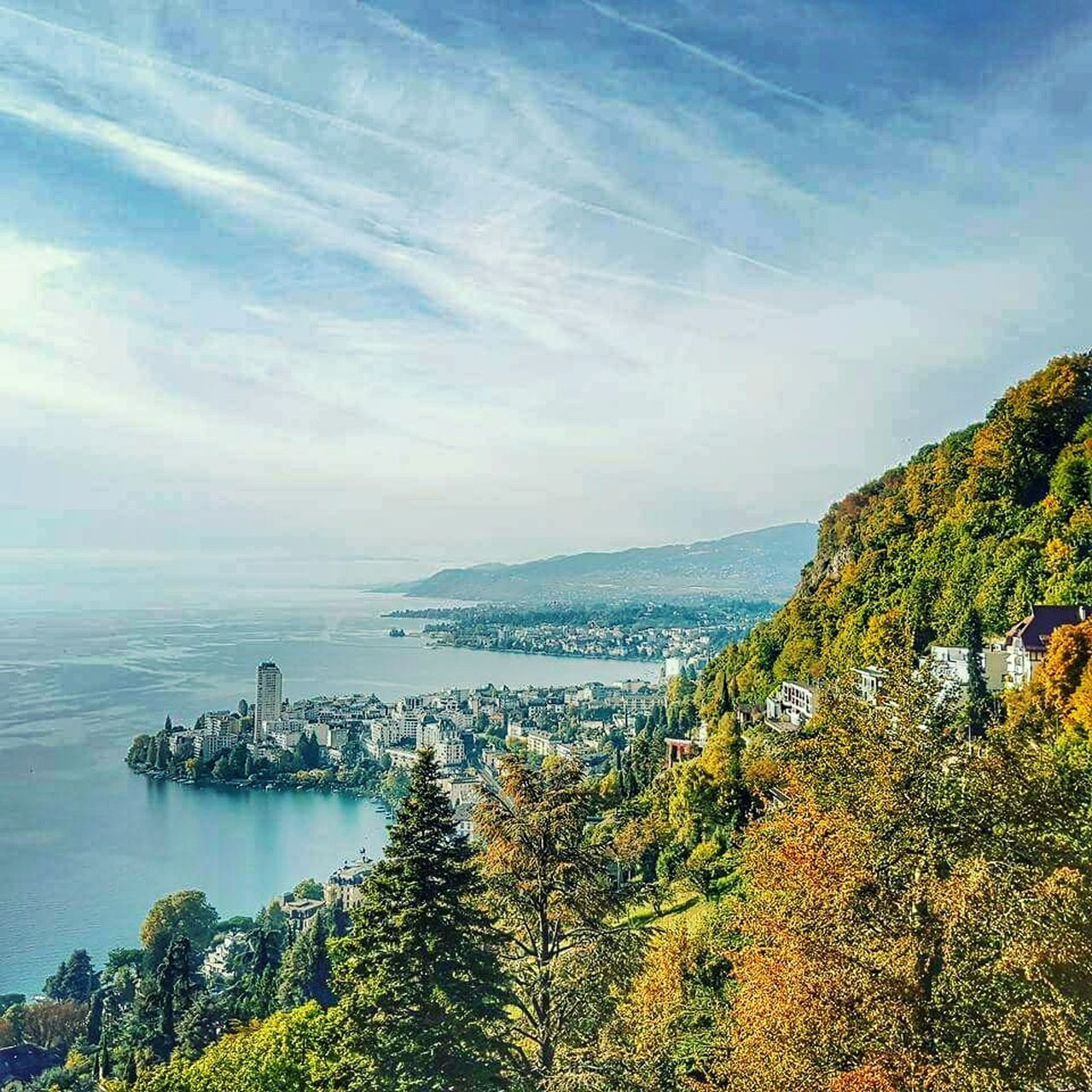 Montreux Montreux Switserland Montreux, Switzerland Rochers De Naye Mountain Aerial View Landscape Leman Lake Switzerland Leman Beauty In Nature Tree