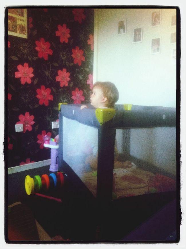 Little Baby Teagan In Her Playpen