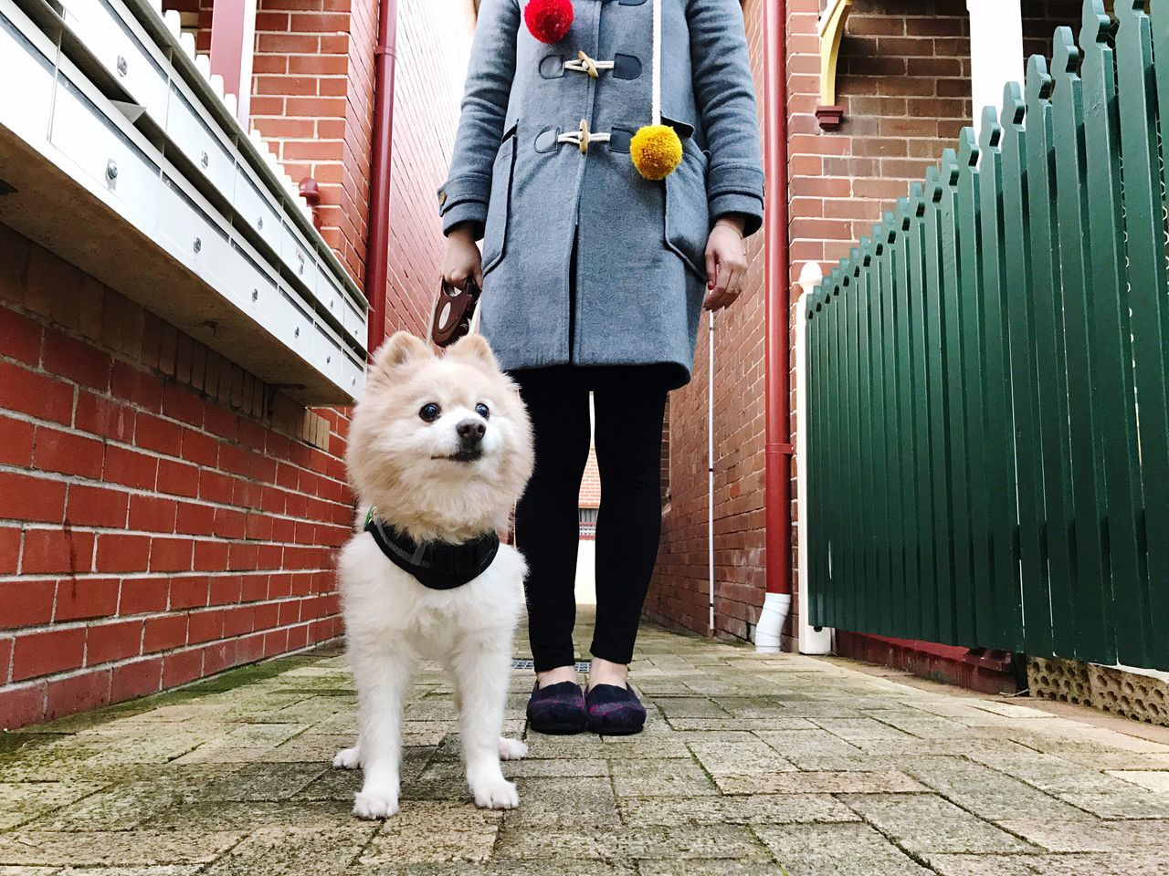 Saturday Walk with My Boo | Self Portrait