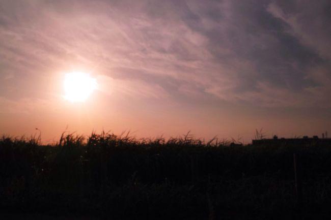 お疲れ様。 Sunset Twilight Afterglow 夕暮れ時 SigmaDP1X
