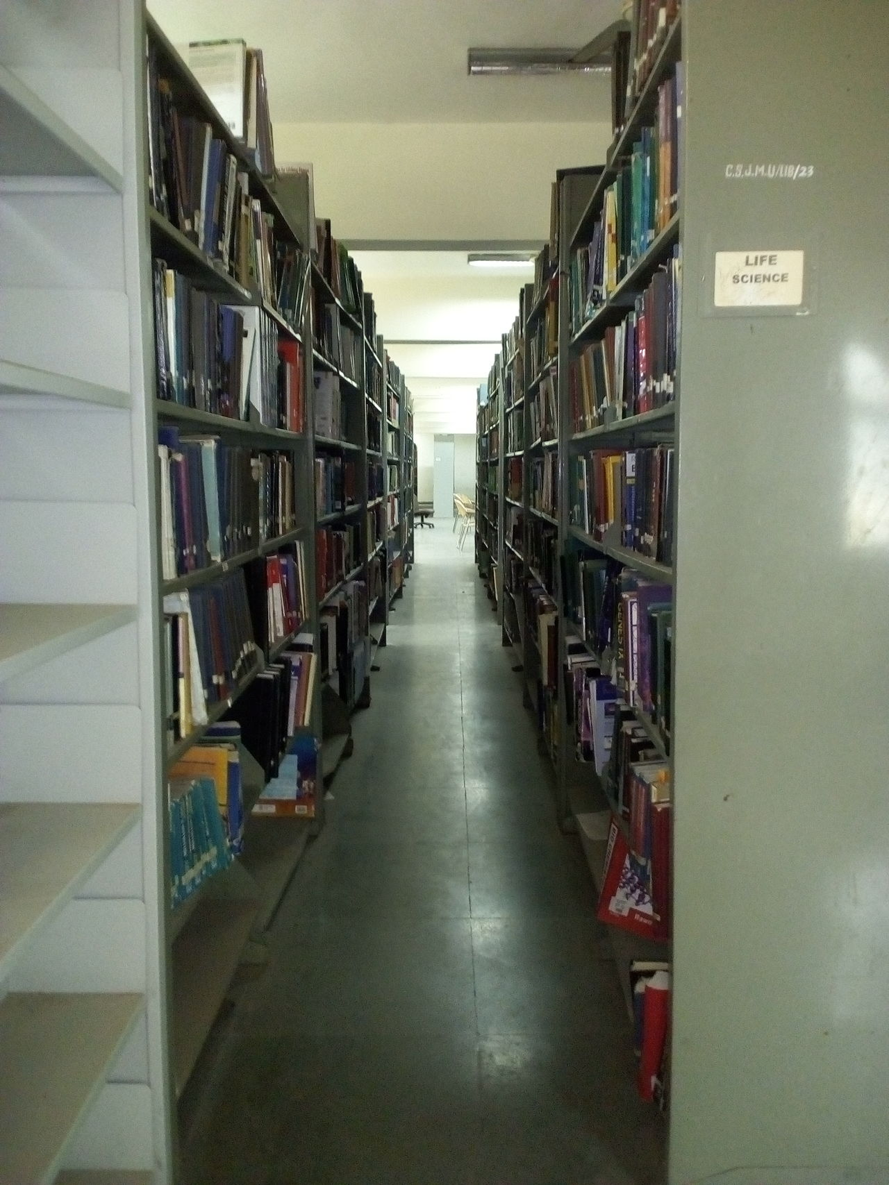 Shelf Indoors  Bookshelf Large Group Of Objects Stack Abundance Library No People Day Architecture