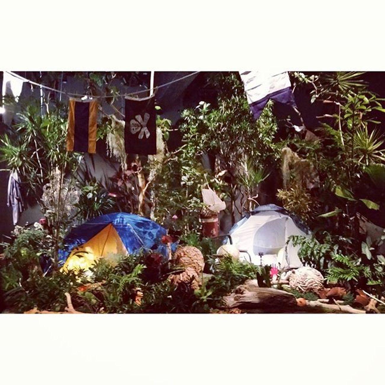 satieさんのでっかい個展atラフォーレミュージアム原宿❣ 植物のお買い物も出来るよ(⌒_⌒) 11/19−11/23おいでませ〜♡ グリーンフィンガーズ Satie 川本諭