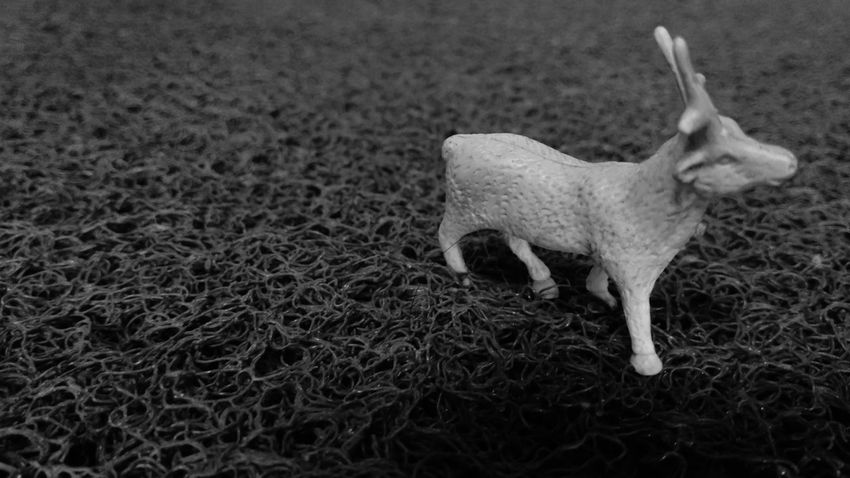 toy Deer black and white Grazing Home is Where the Art is Toy Deer Black And White Grazing