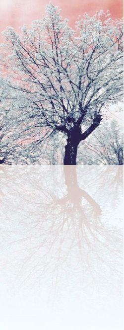 Reflection Reflections In The Water Riflesso riflessi sull'acqua eye Fantasy Photography My Passion ❤ EyeEm Gallery Fotografia Galleriafotografica Hello World Colors I LIKE👍EyeEm😃👍 Nature Alberi Photo Passionefotografia Photoshoot EyeEm Nature Lover Naturephotography Foto Italy Toscana San Donato In Poggio Thankyou