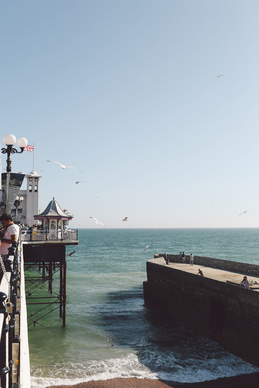 Birds Flying Over Sea Against Clear Sky Seen From Brighton Palace Pier