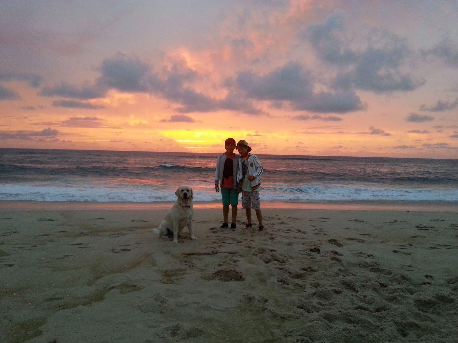 Sunset Lifestyles Beach Sea Nature Semfiltro Pordosol Praiadavieira