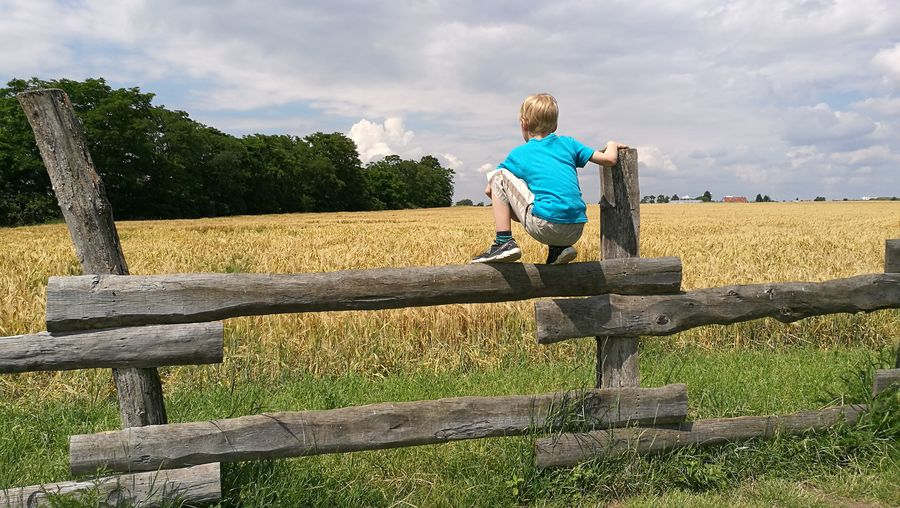 Boy Sitting On Fence Child Landscape Field View Grain 43 Golden Moments Adventure Club EyeEm Gallery Fashion People And Places Großziehen Brandenburg What Who Where Enjoy The New Normal My Year My View waiting game Uniqueness The Great Outdoors - 2017 EyeEm Awards