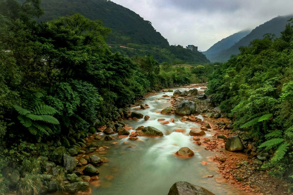 EyeEm Taiwan The View And The Spirit Of Taiwan 台灣景 台灣情 Naturelovers Nature_collection Eyem Nature Lovers  EyeEm Nature Lover Nature