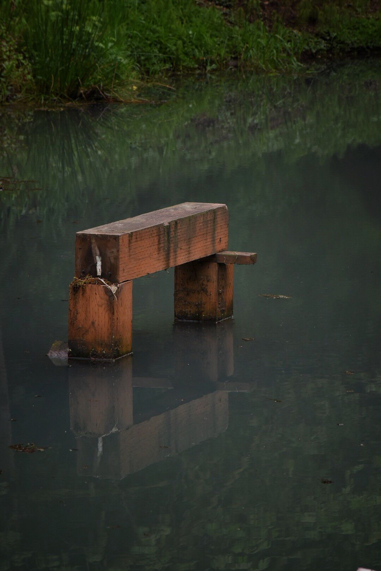Water Reflection Outdoors Nature Day Tranquility No People Lake Waterfront Beauty In Nature Scenics The Architect - 2017 EyeEm Awards The Great Outdoors - 2017 EyeEm Awards Fragility Wood - Material Reflection Water Reflections Pond Water_collection Pond Life Wood Close-up Nature