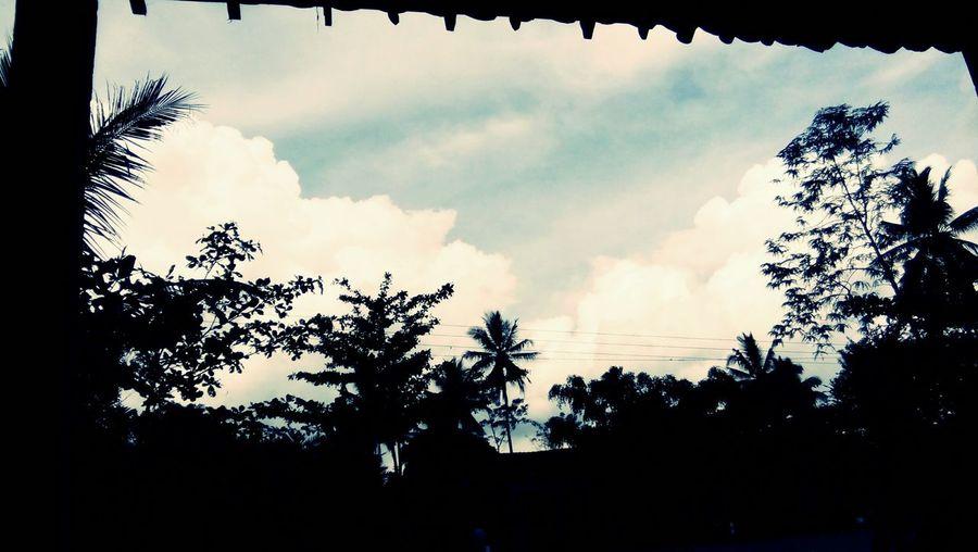 Pesona indonesia. Cloud - Sky Tree Sky No People Nature Beauty In Nature