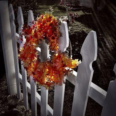 Plastic flowers on a plastic fence. Autumnal kitsch. #plastic #fence #kitsch #instatagapp #instagood #iphonesia #photooftheday #instamood #igers #instagramhub #picoftheday #instadaily #webstagram #instagramers #statigram #igaddict #iphoneartists #iphoneon Statigram Instagramhub Fence Webstagram WeAreJuxt Instadaily Kitsch Instatagapp Iphoneonly Jj_forum Photooftheday Igaddict Iphonesia Instagrammers Plastic Instaaddict Picoftheday Canvaspop Igers_philly Iphoneartists Instamood Mnolt Igers Jj  Instagramers Instagood