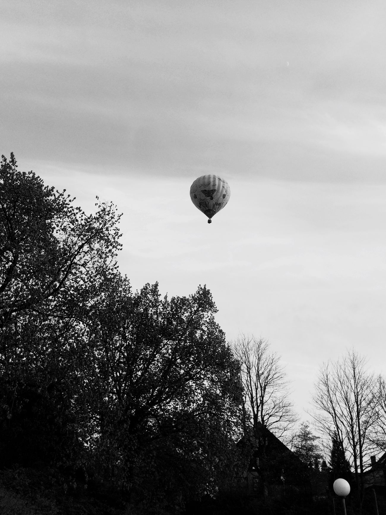 Sky And Clouds Hot Air Balloons Blackandwhite BTM Relaxing