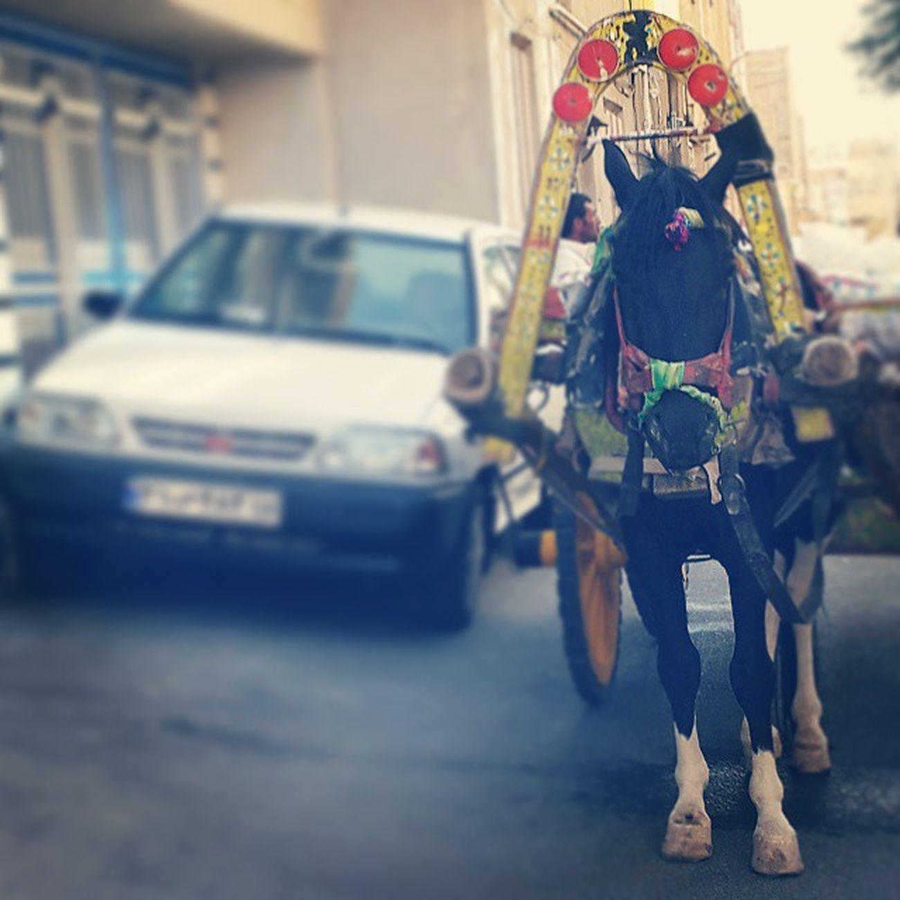 هنوز نسل مرده زنده است این چرخ فلک که ما در او حیرانیم فانوس خیال از او مثالی دانیم خورشید چراغ دان و عالم فانوس ما چون صوریم کاندر او حیرانیم اسب قاطر الاغ و یا خر با گاری یا همون درشکه کنار ماشین پراید