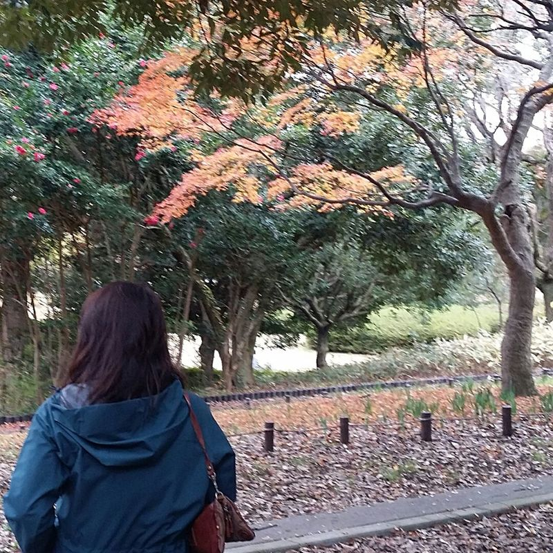 That's Me Sitting One Person The Colours Of Autumn The Colours Of Nature Japanautumn Japanautumn2016 Japannov2016 Autumn Trees Showa Kinen Park