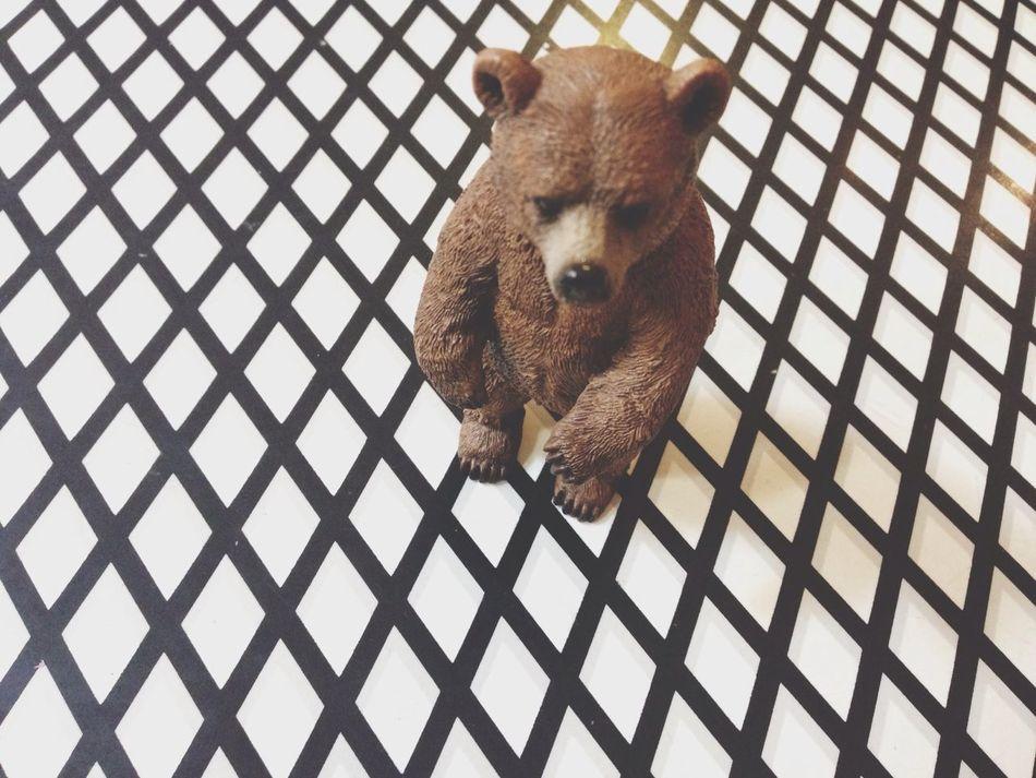 Beautiful stock photos of bear, Animal Representation, Animal Themes, Bear, Berlin