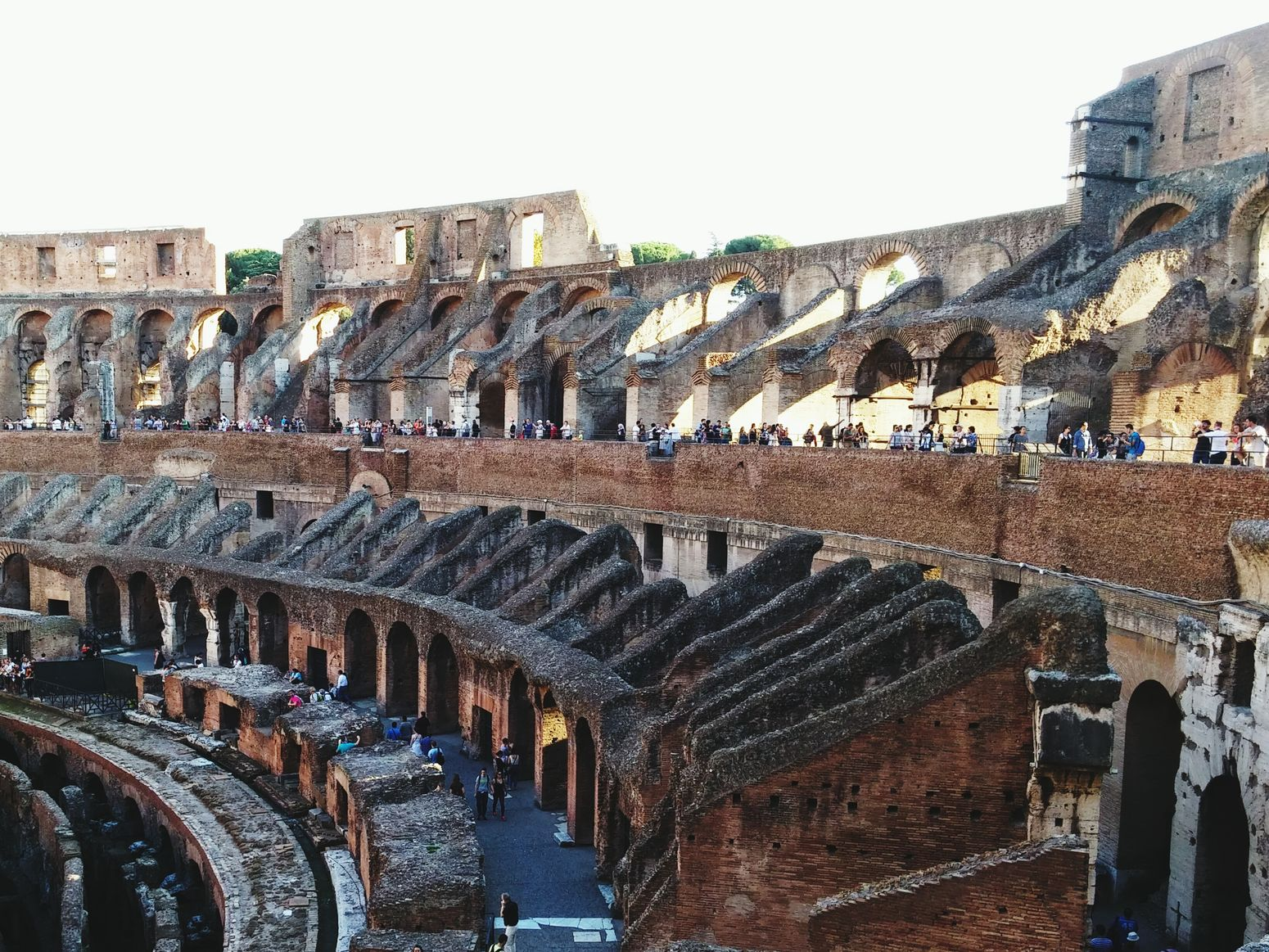 TheColosseum ??