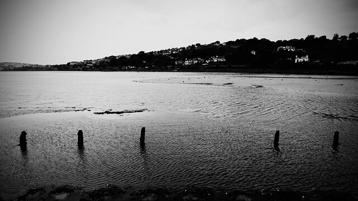 View from Saltram earlier today looking towards the embankment in plymouth,Devon black and white Tranquility Outdoors Landscape Beauty In Nature Low Tide Capture Snapshot Zeisslens Viewbug Hx400v The Great Outdoors - 2017 EyeEm Awards Bnw_captures Blackandwhite Photography