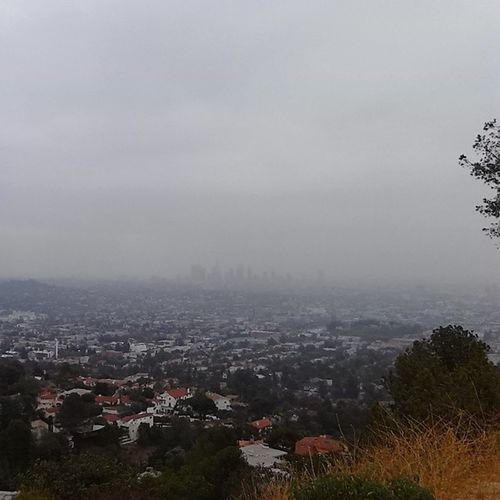 Downtown L.A Lostinthefog Beautiful Sweetserendipity