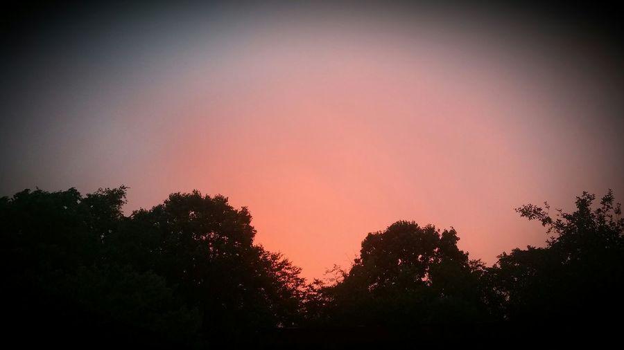Orange Sunset Dreams First Eyeem Photo